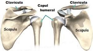deteriorarea capsulei în articulația umărului