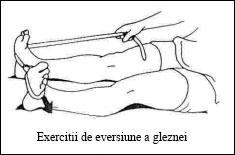 06.eversiune_glezna