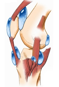 Totul despre artrita genunchiului - Simptome, tipuri, tratament | thelightdesign.ro