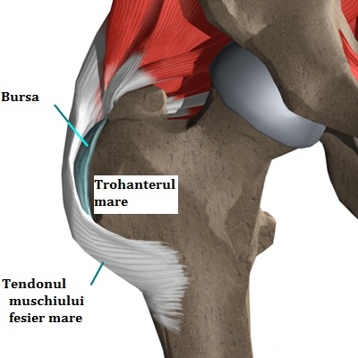 durere la nivelul coapsei și șoldului drept