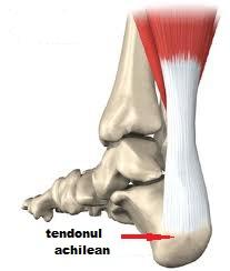 simptome de deteriorare a ligamentelor genunchiului