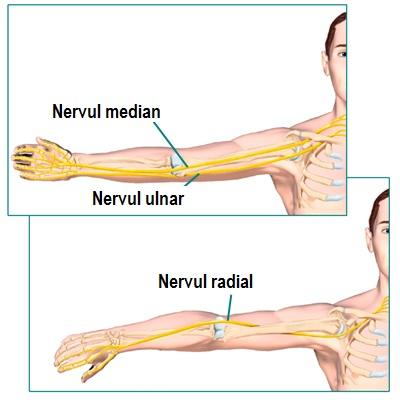 Răsucește articulația și doare articulația cotului, Cot durere: cauze