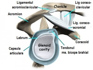 Hygroma de pe incheietura mainii cauzeaza tratamentul