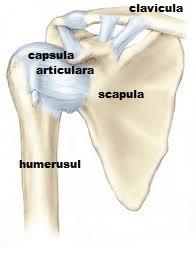 injecții pentru ameliorarea durerii în articulația genunchiului erupții ale durerii musculare și articulare