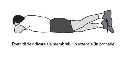 exercitii_ridicare_mb_extensie_pronatie